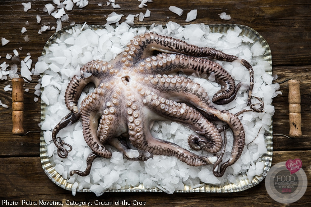 Food Photographer of the Year Octopus On Ice