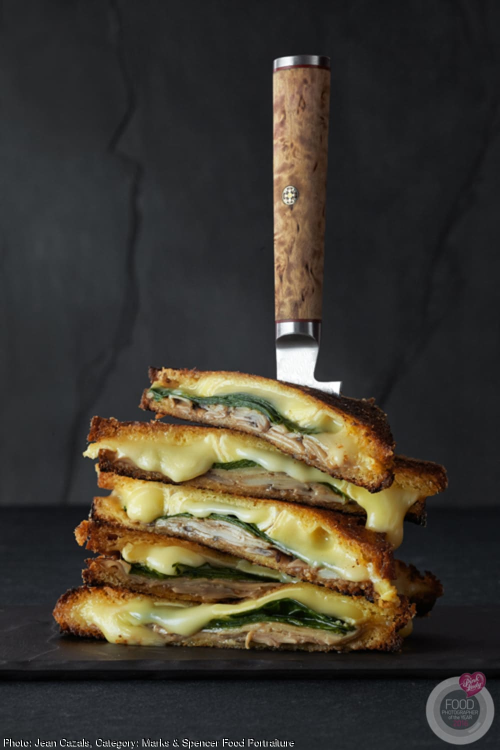 Food Photographer of the Year Grilled Cheese