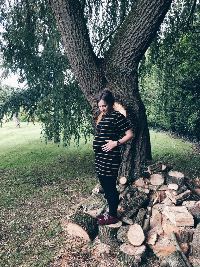 5 months pregnant zara dress