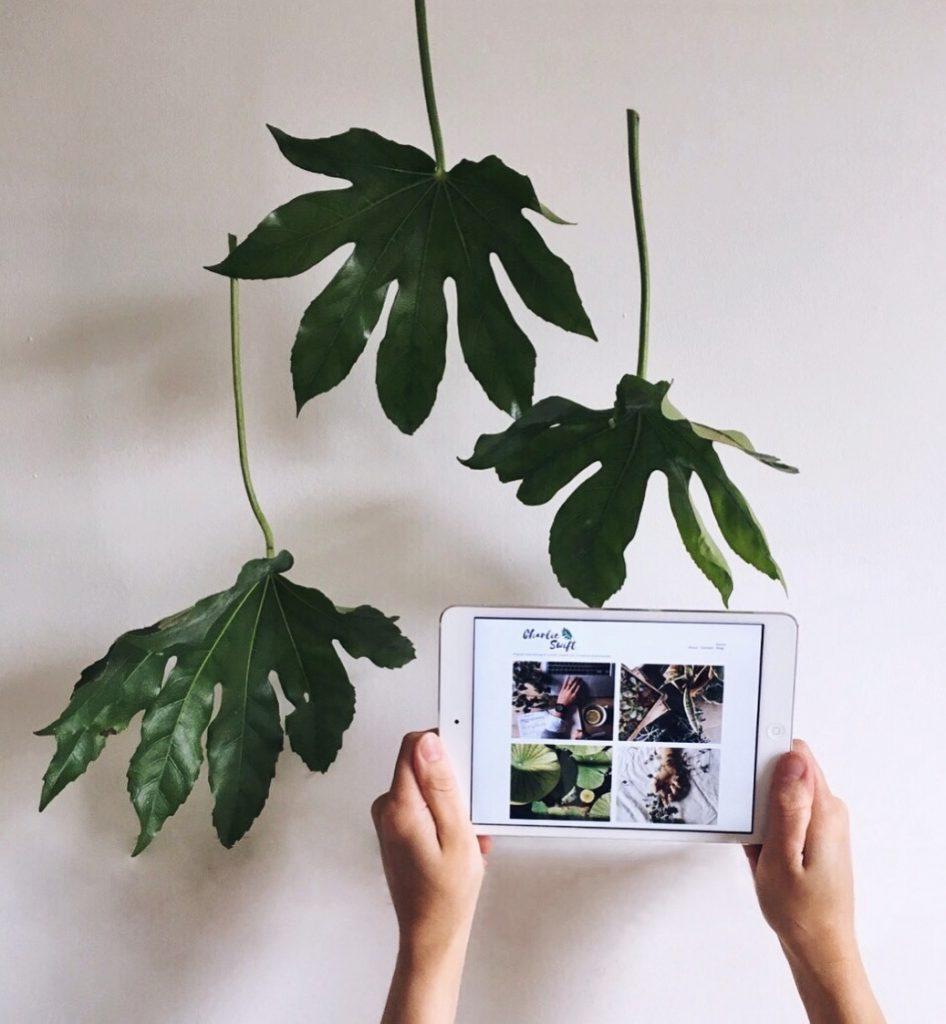 Holding iPad with hanging leaves | charlieswft.com