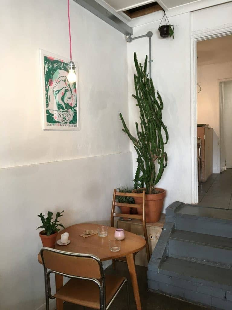 Cafe interior with wooden furniture and big cactus plant