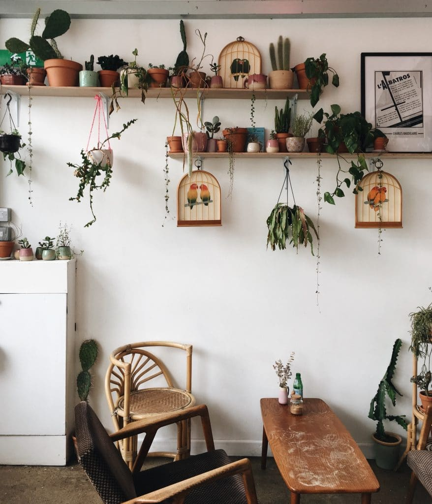 Cafe interior with wicker furniture and house plants