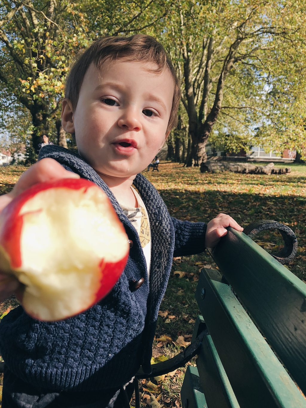 portrait of a 10 month old baby eating an apple on a park bench
